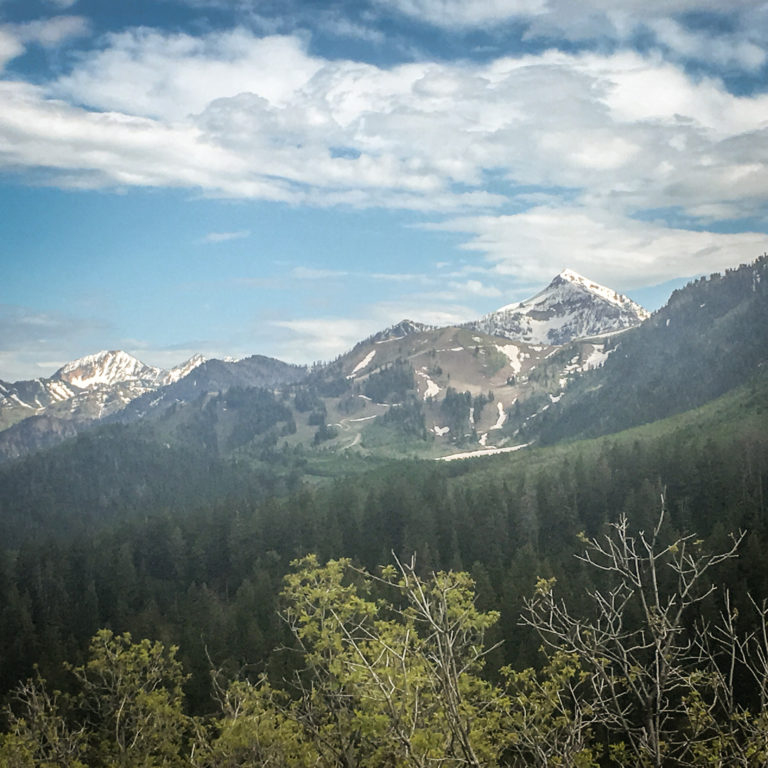 Mount Timpanogos Wilderness Area