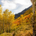 Alpine Loop Scenic Byway fall colors American Fork Canyon Utah